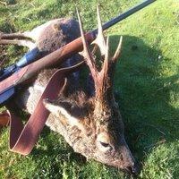 Sunday Buck