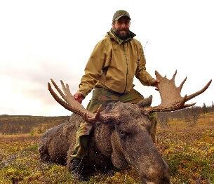Moose Hunting 2